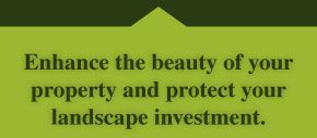 Enhance the beauty of your property and protect your landscape investment.