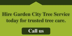 Hire Garden City Tree Service today for trusted tree care. | Call us